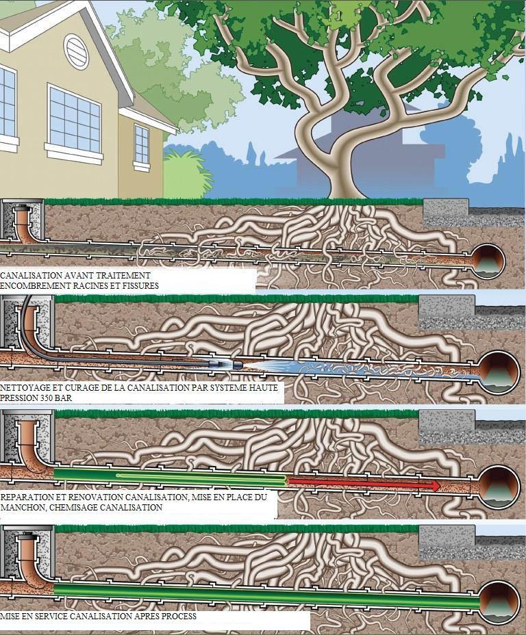 réparation canalisation fissurée par racines